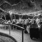 tiber-canyon-ranch-wedding-reception